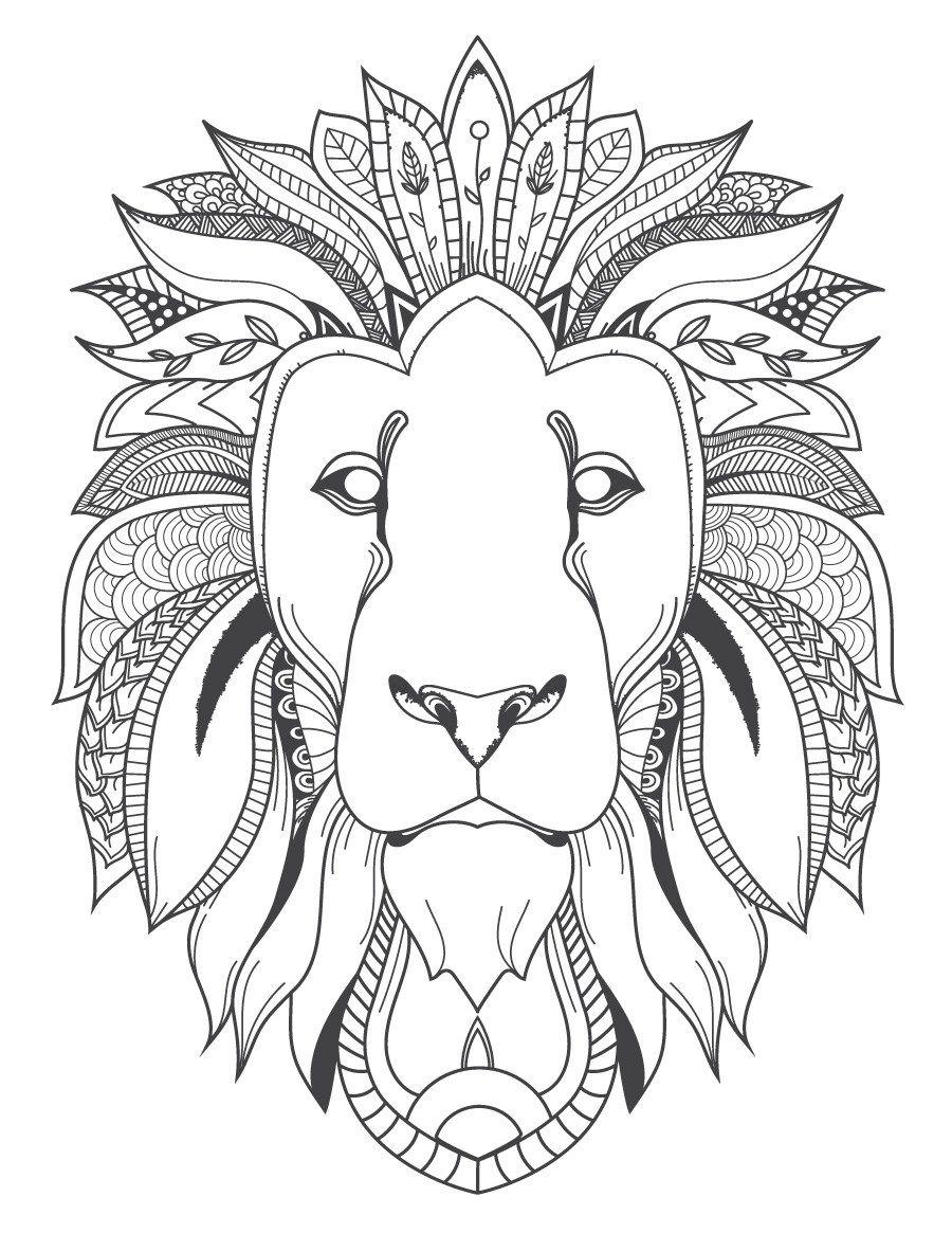 Image félin tªte de lion coloriage pour adulte  imprimer