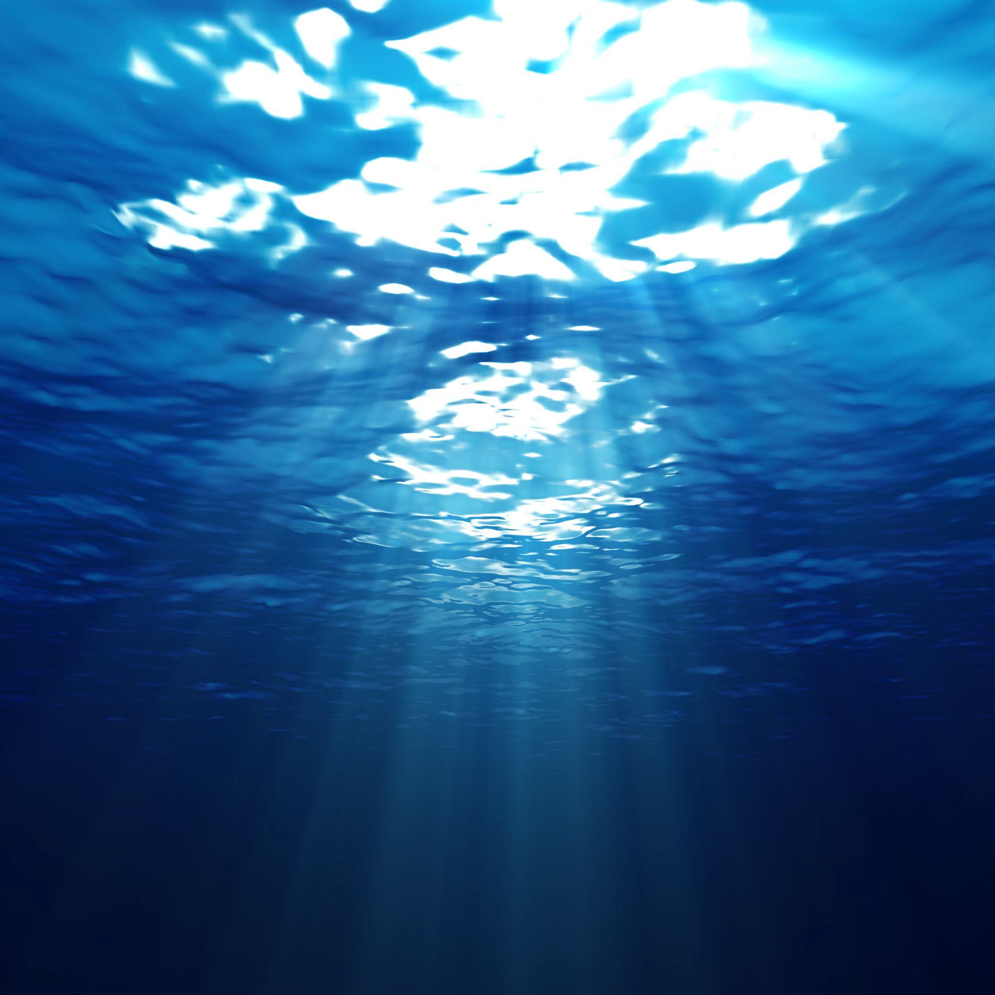 壁紙 水中