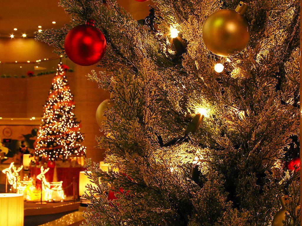 神戸ポートピアホテルクリスマスイルミネーション 壁紙写真集 無料写真素材 Kobe Travel Coocan Jp1024 768buscar Por Imagen 神戸ポートピアホテルロビーのツリーと巨大シャンデリア Noche De Reyes Magos Bus イルミネーション ホテルロビー 壁紙