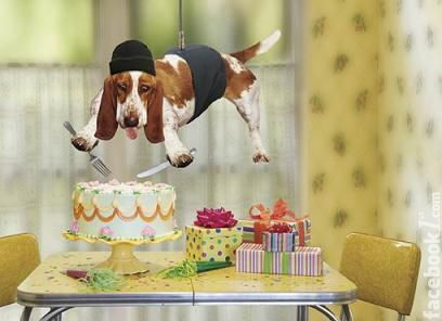 Facebook Happy Birthday Wishes – Witty Birthday Greetings