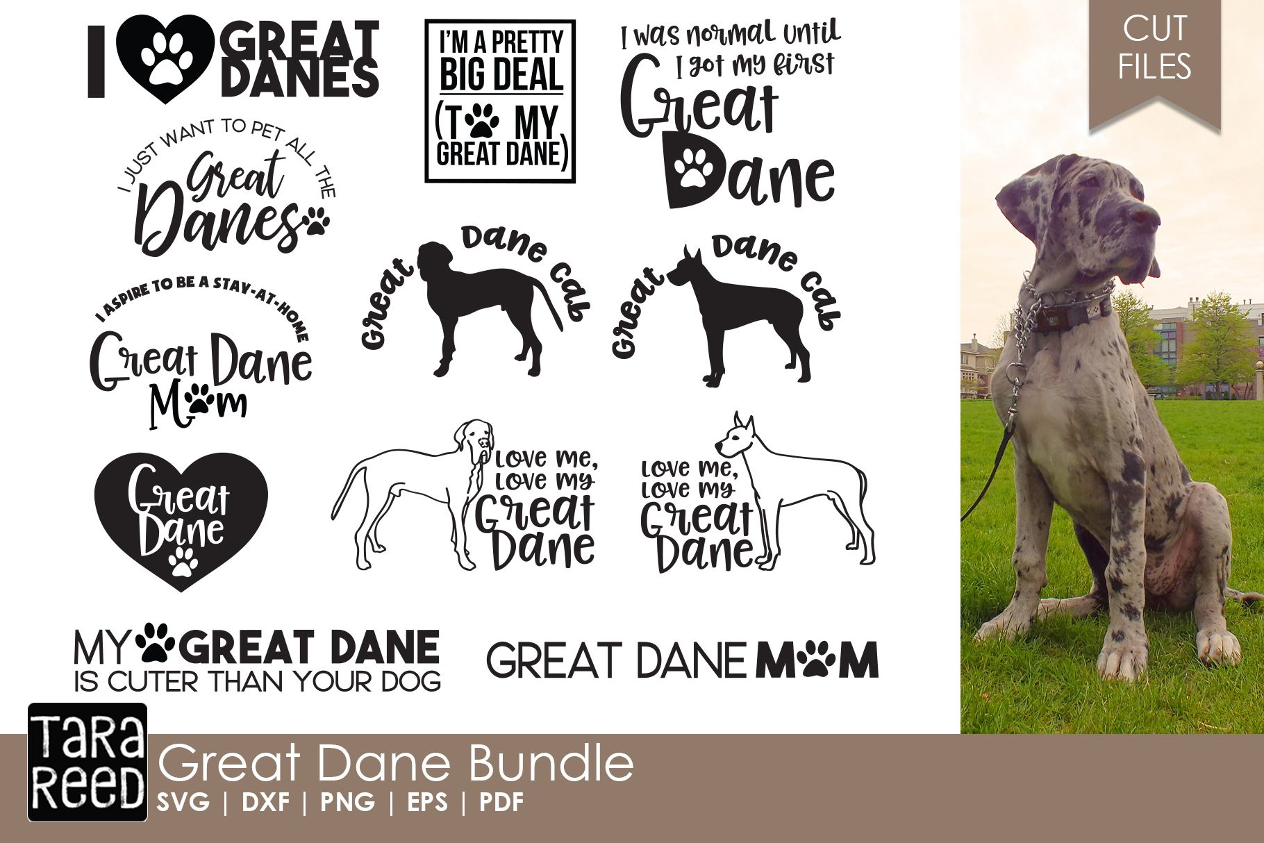 Great Dane Bundle Great Dane Puppy Meant To Be Quotes Pretty L