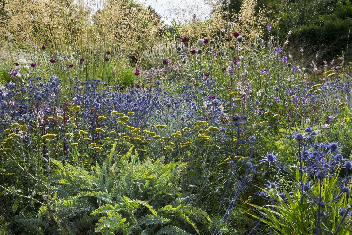 Dove Cottage Nursery Garden, nr Halifax, Yorkshire, HX3 ...