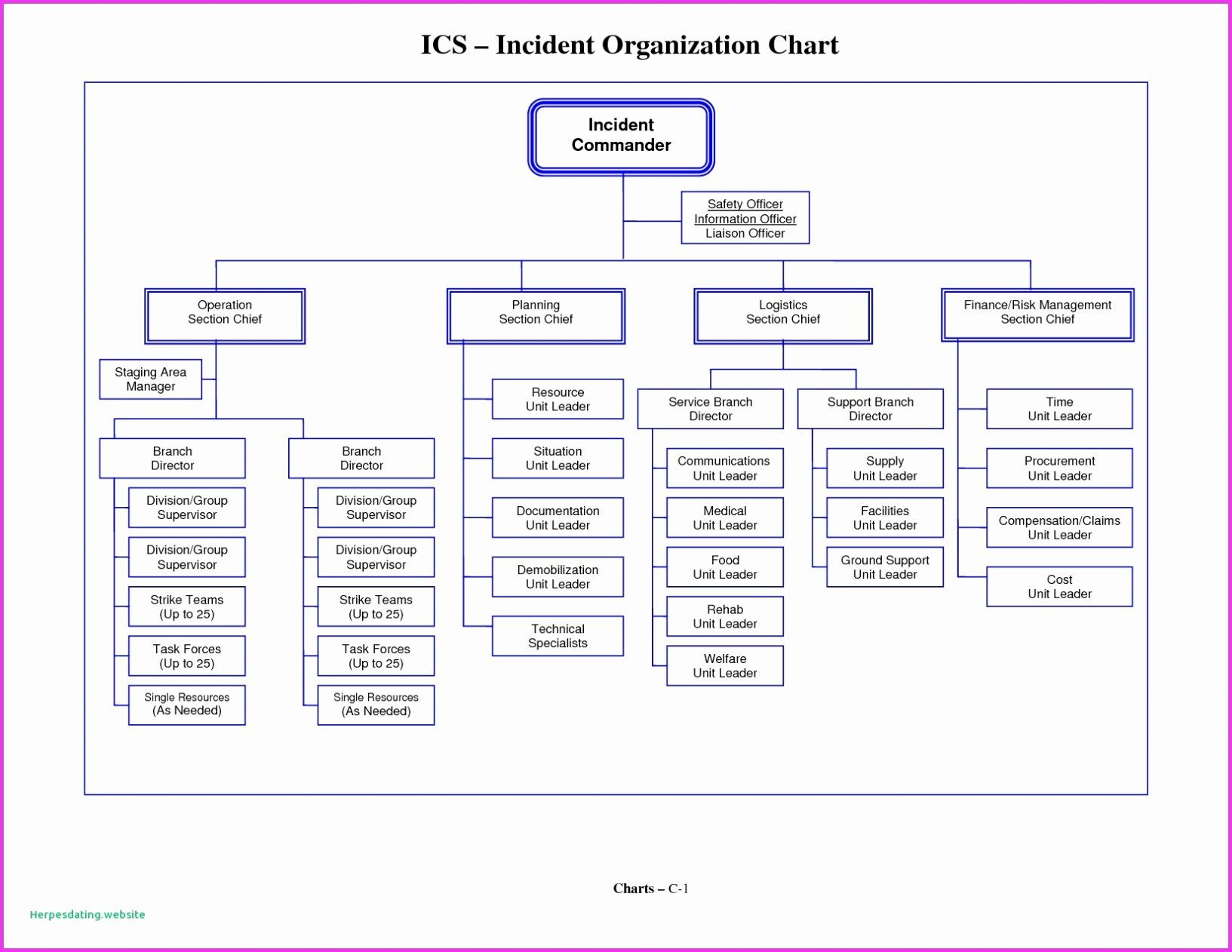 Unique Blank Organizational Chart Template In