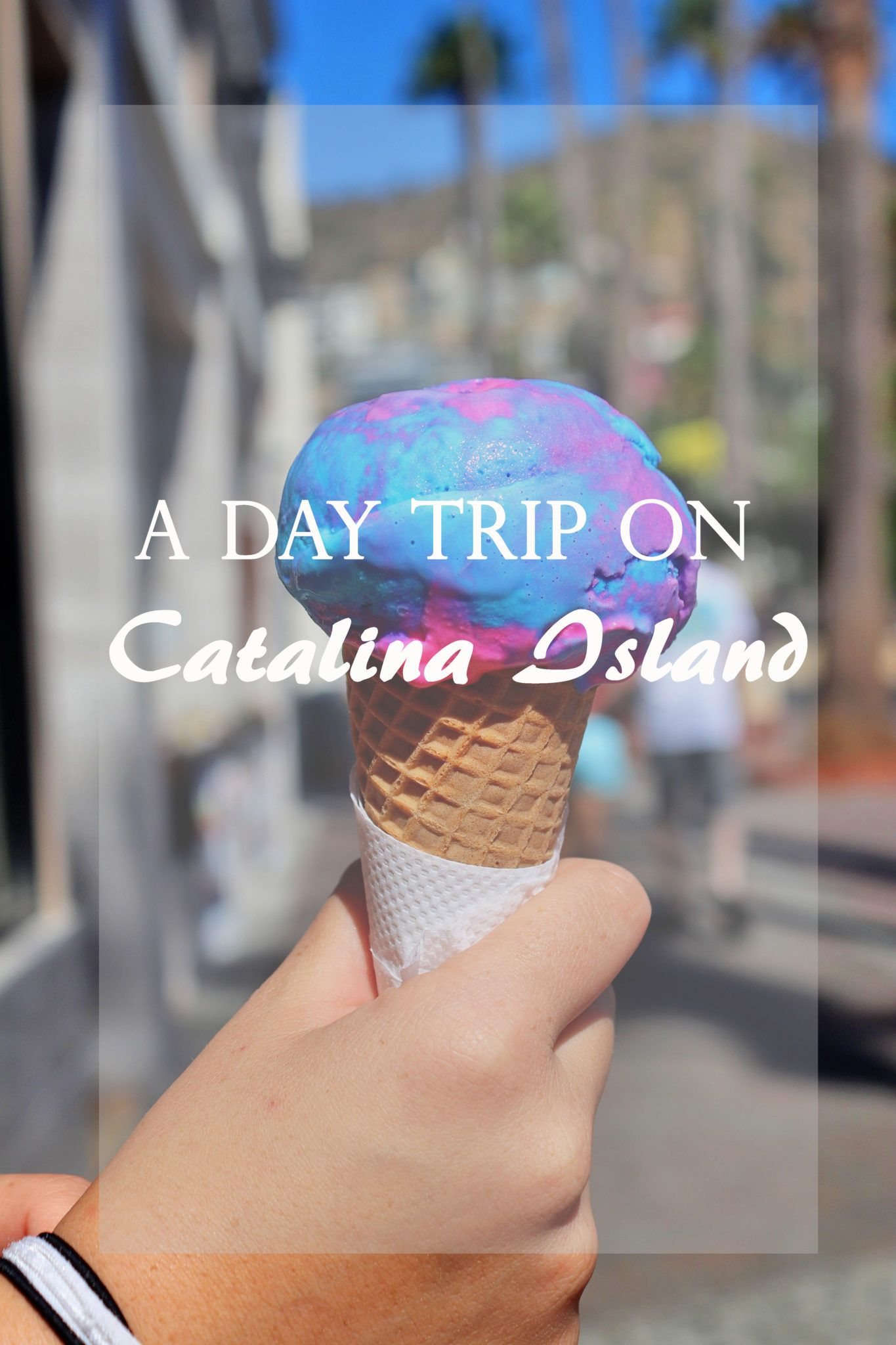How To Spend One Day On California S Catalina Island With Images Catalina Island Catalina Island California Island Cruises