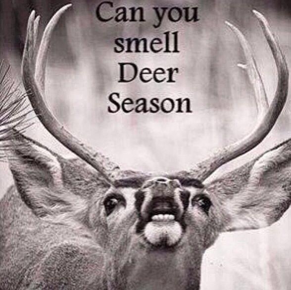 Deer season quote | Hunting quotes, Deer hunting season ...