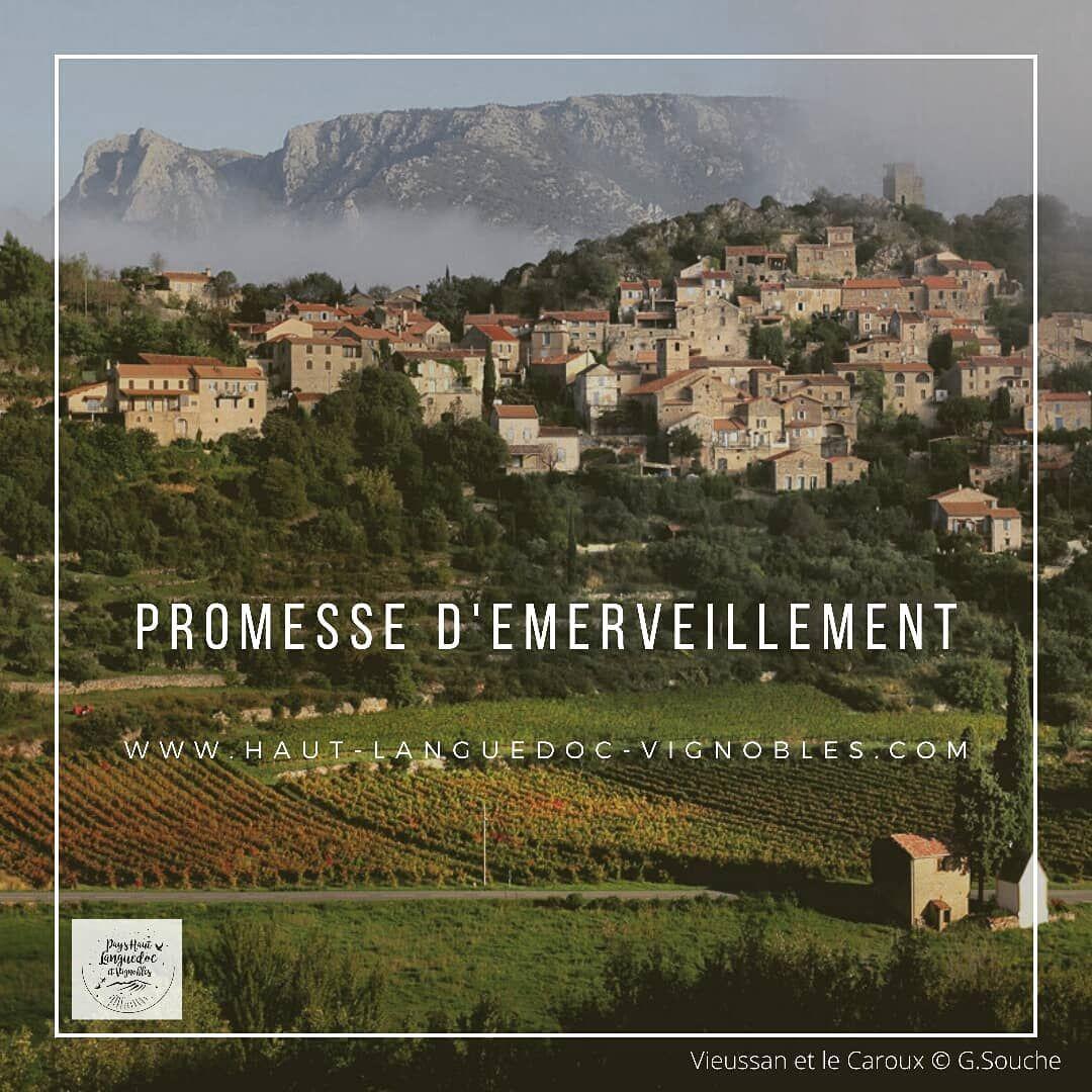 Haut Languedoc Et Vignobles Hautlanguedocetvignobles A Publie Du Contenu Sur Instagram 22 Juil 2020 A 3 26 Utc Languedoc Movie Posters Poster