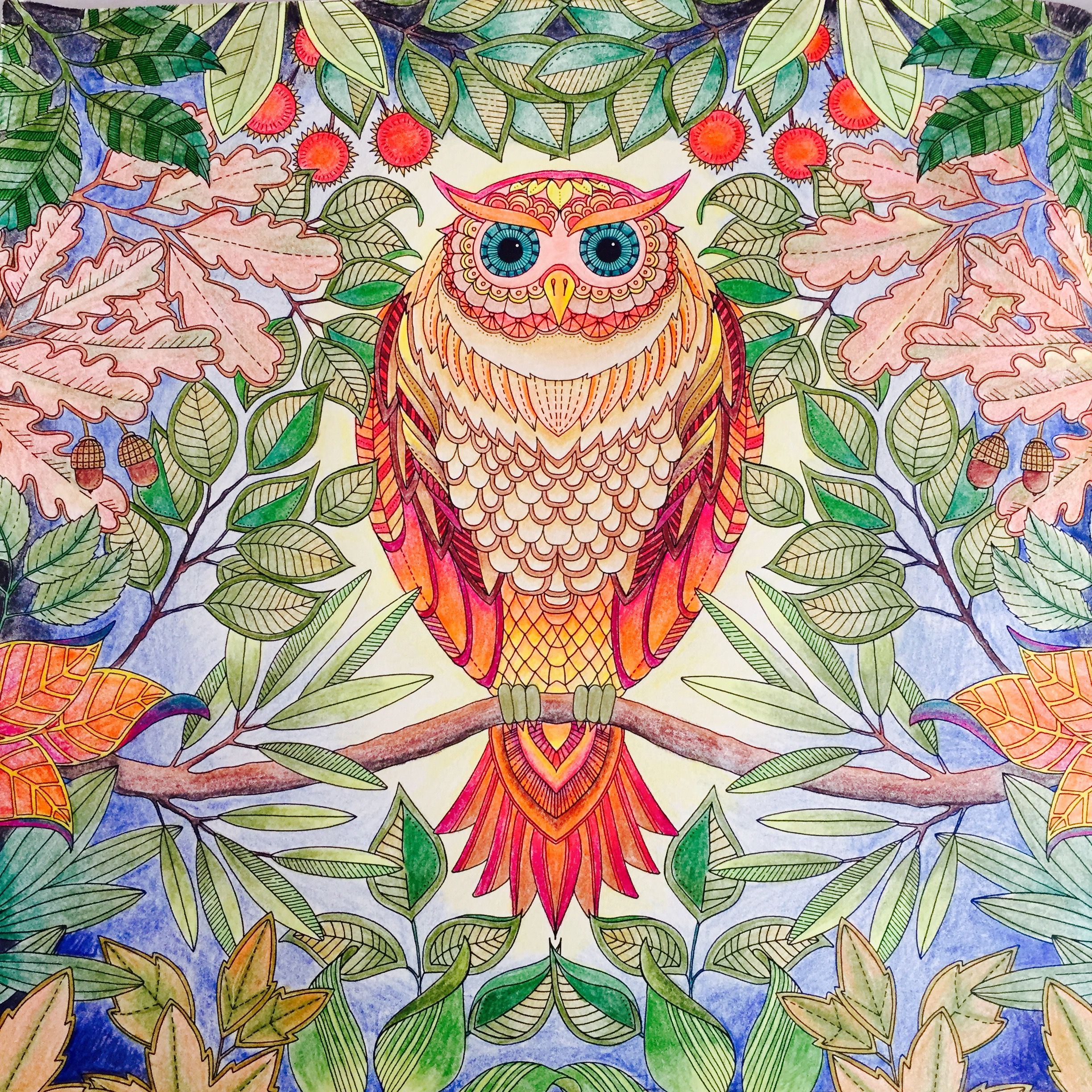 Secret Garden Johanna Basford Colouring