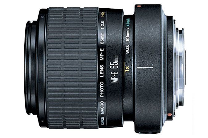 Canon MP-E 65mm f/2.8 1-5x Macro Photo | Canon Online Store... Time to start saving up...