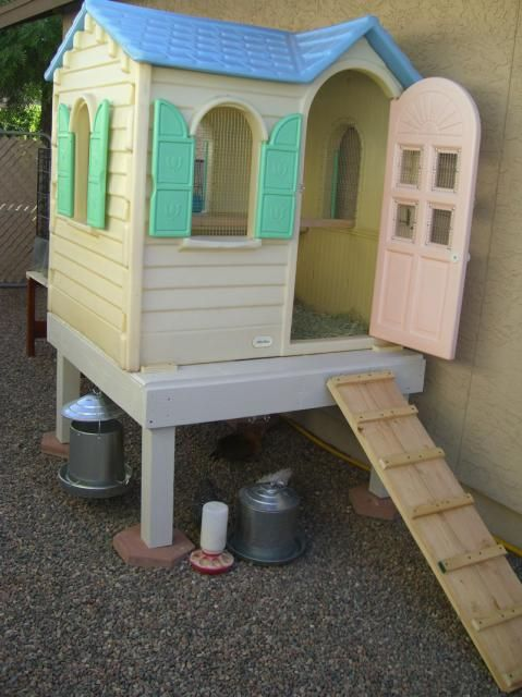 Plastic playhouse converted to chicken coop.  Awesome!