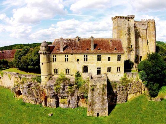 vente Château 13 pièces (603 m²) 880000 € Dordogne (24) | Explorimmo