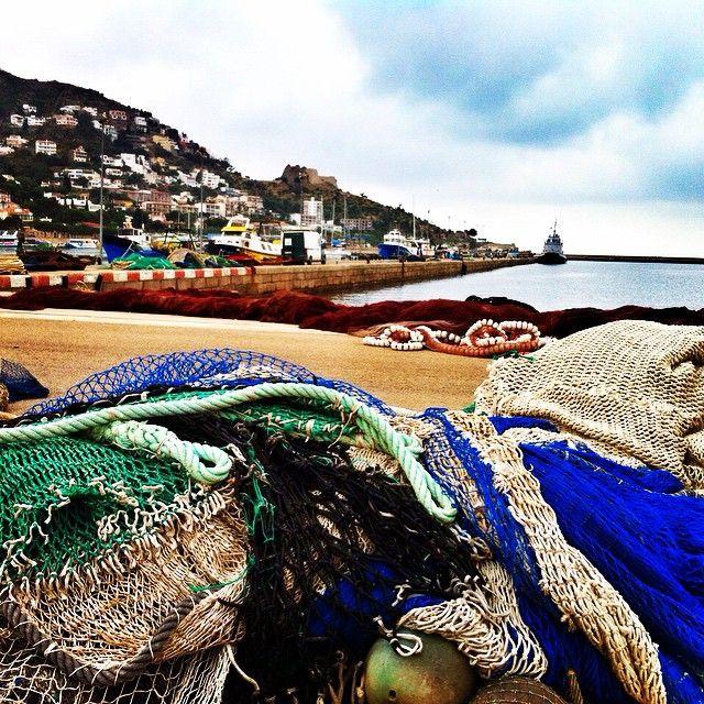 Los viernes a las 17h, visitas guiadas al puerto de pesca de Roses! #aroses #visitroses #costabrava #catalunyaexperience
