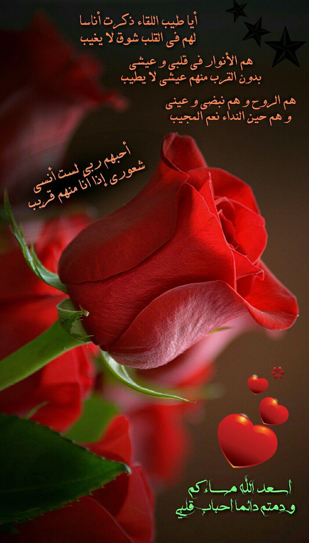 مساء الخير Good Evening Wishes Good Morning Arabic Good Night Messages