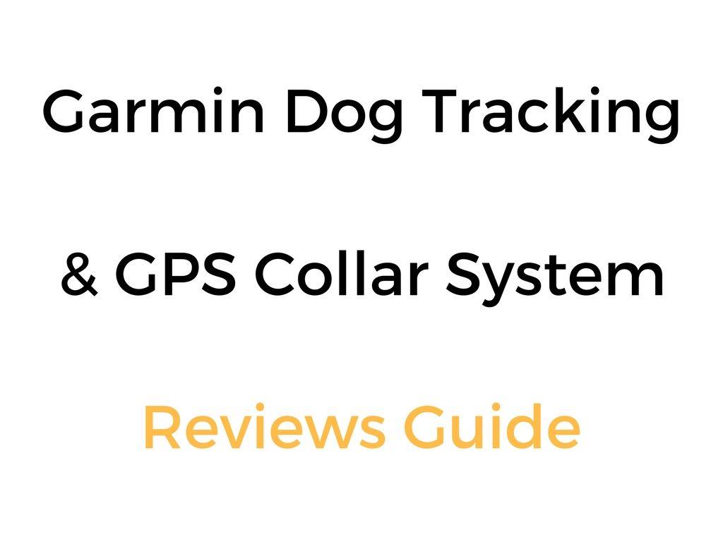 Garmin Dog Tracking Amp Gps Collar System Reviews Guide