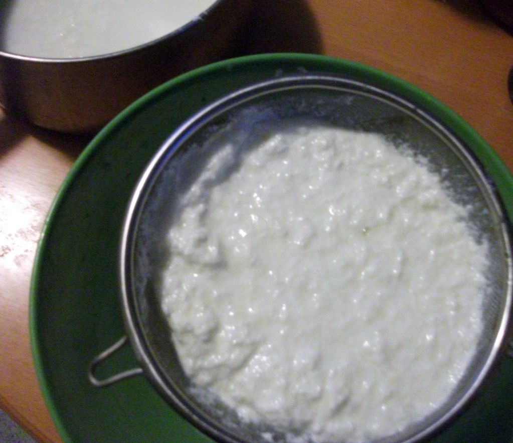 Homemade Cottage Cheese on Pinterest
