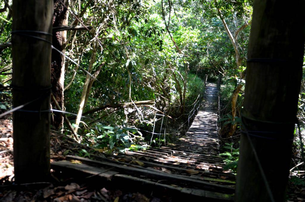 Ponte trilha ecoturismo