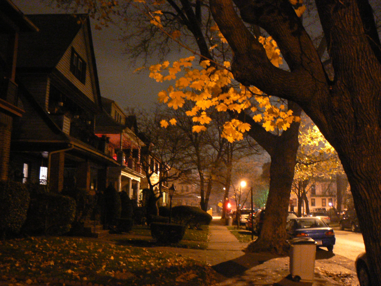 New York City At Night Brooklyn Night City New York City City