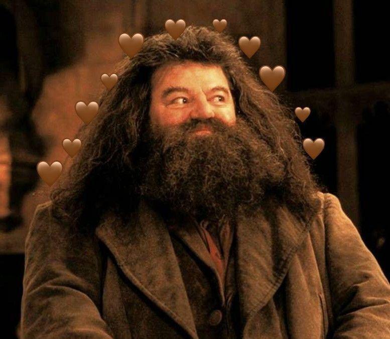 Hagrid Harry Potter Filmleri Harry Potter Film