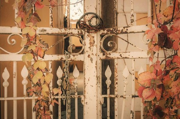 House gate romantic autumn leaves photo print (18x24 inches) via photoprintscy. Click on the image to see more!
