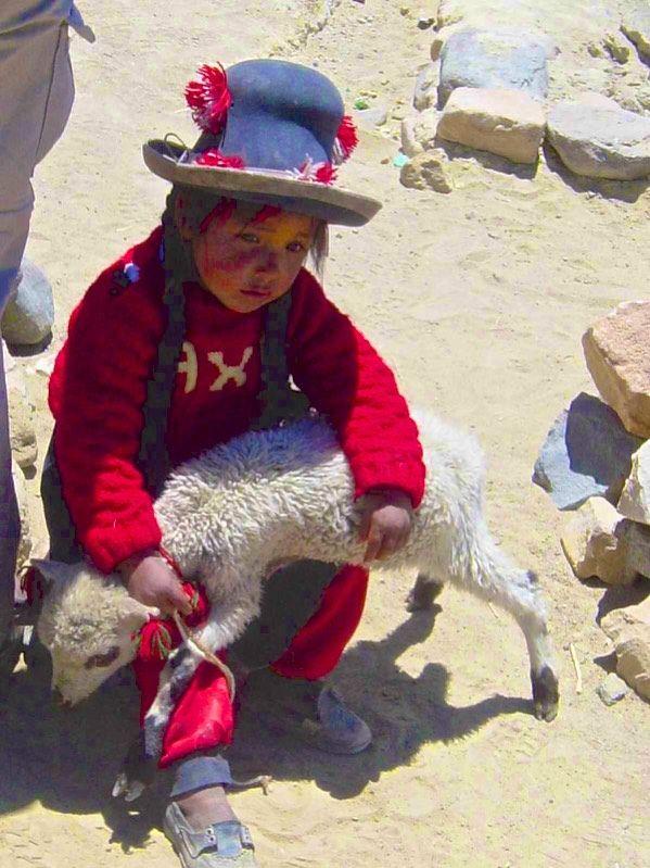 56 nina alpaca #WoolWeek #Woolweek @eduardoxavierph (only available in small prints)