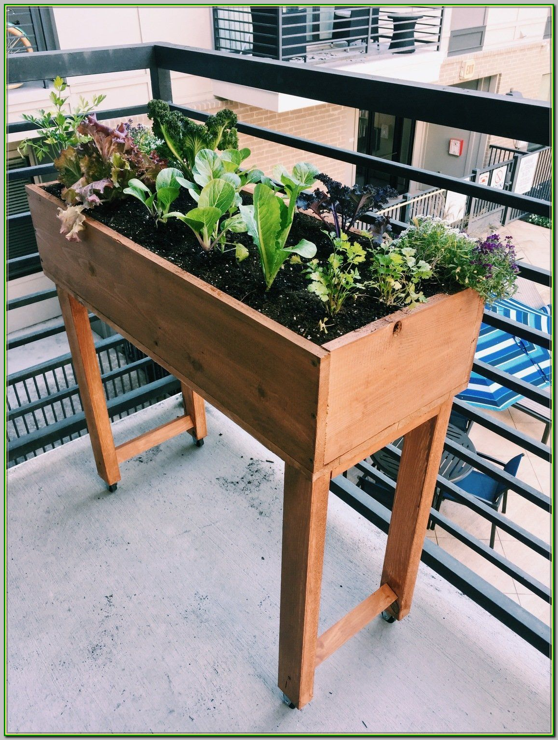 When The Soil Is Unhealthy It Is Not As Resistant To Pests More Information Can Be Found By Clicki Garden Planter Boxes Raised Planter Boxes Raised Planter