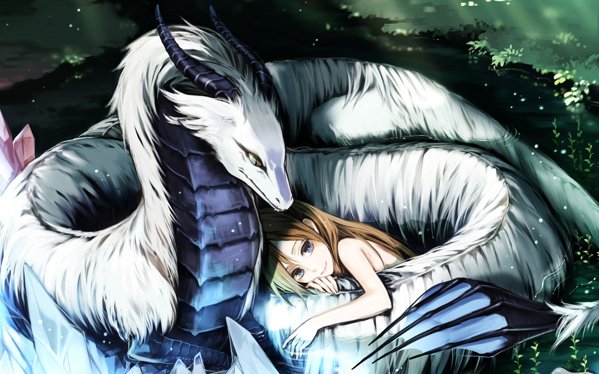 Anime Original Dragon Girl Anime Wallpaper ศิลปะ