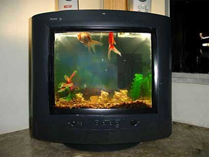 Old Tv What Can You Do With It Diy Fish Tank Old Tv Creative