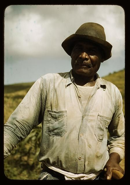 Farm Security Administration borrower, vicinity of Frederiksted, St. Croix, Virgin Islands. December 1941. Photo by Jack Delano.