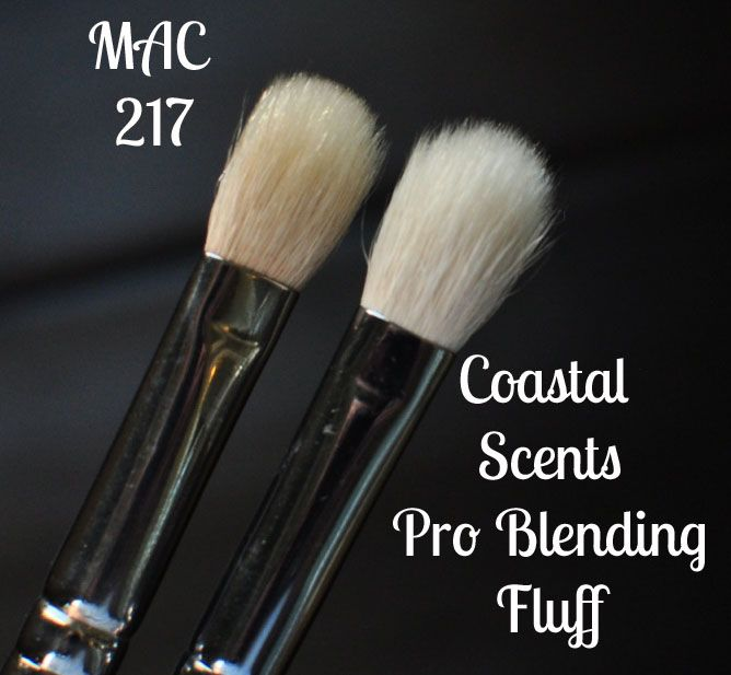 coastal scents brushes uses. coastal scents pro blending fluff brush vs. mac 217 brushes uses