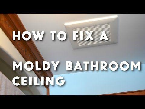 How To Get Rid Of Bathroom Ceiling Mold   Www.stevemaxwell.ca