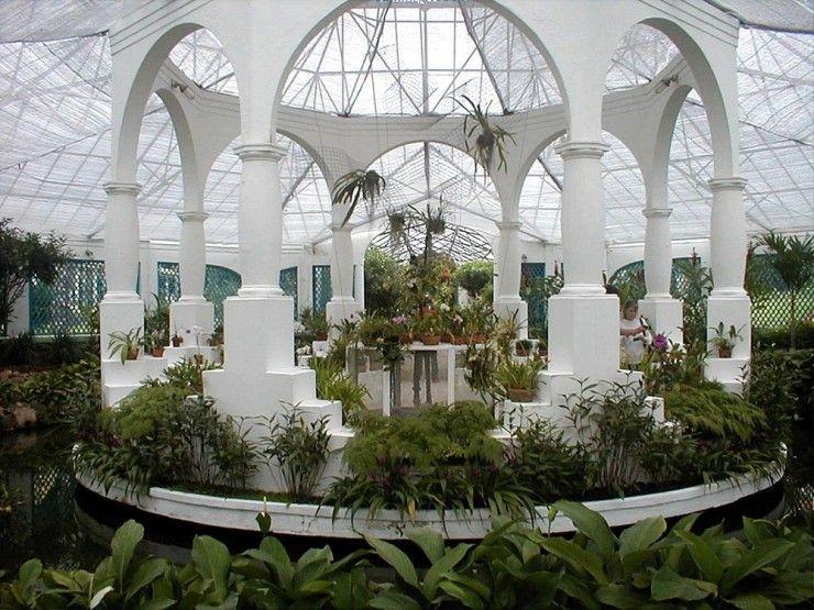 Image Result For Rio De Janeiro Botanical Garden Rio De Janeiro