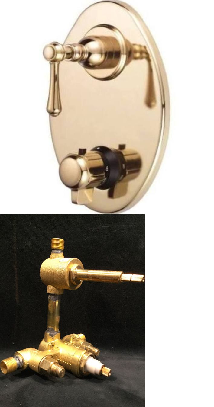 Other Home Plumbing and Fixtures 3191: Danze Two Handle Thermostatic ...