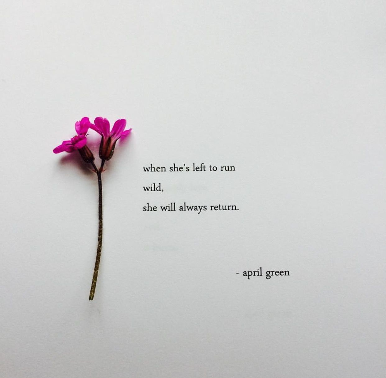 Pin by Umaya Ys on These Lovely Words    | Poetry quotes