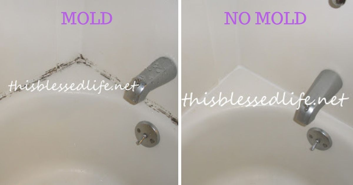 The Easiest Way To Remove Mold And Mildew Stains From