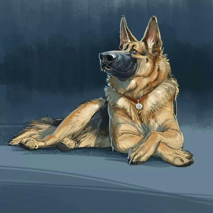 By aaron blaise aaron blaise in 2019 animal drawings dog art art