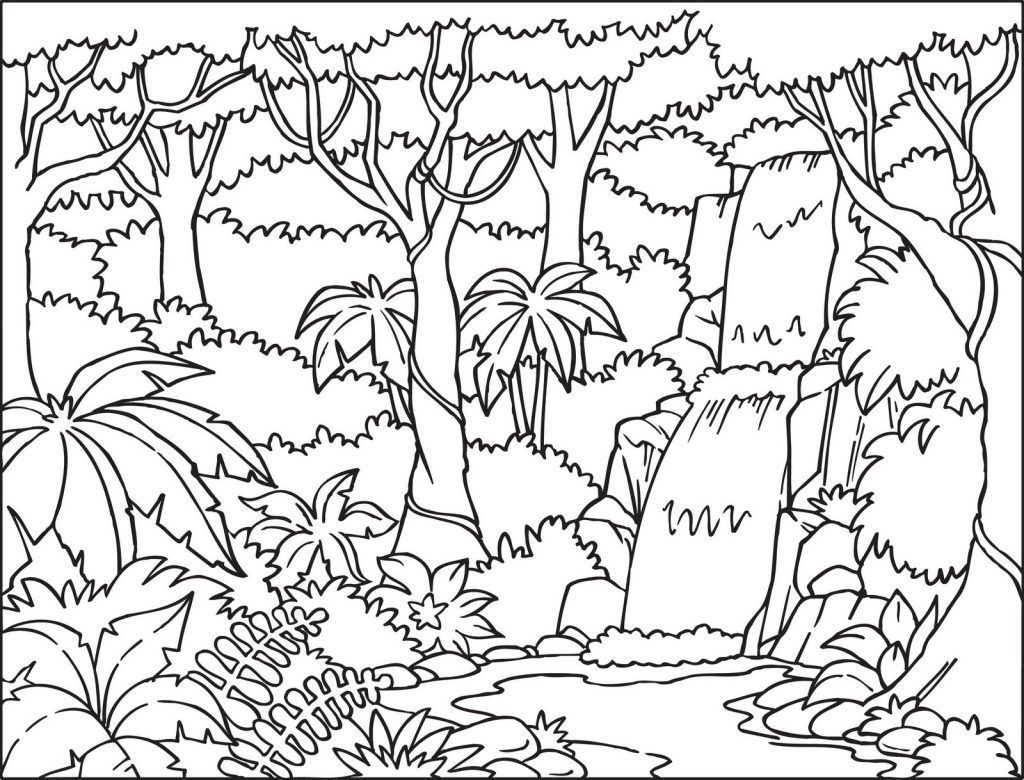 Waterfall Coloring Pages Jungle Coloring Pages Forest Coloring