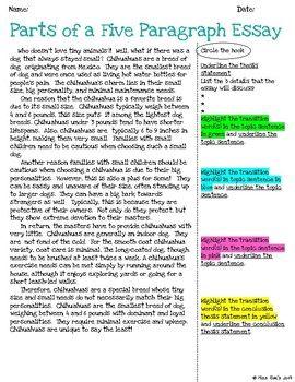 Five Paragraph Essay Unit L Common Core Teaching Writing A Profession