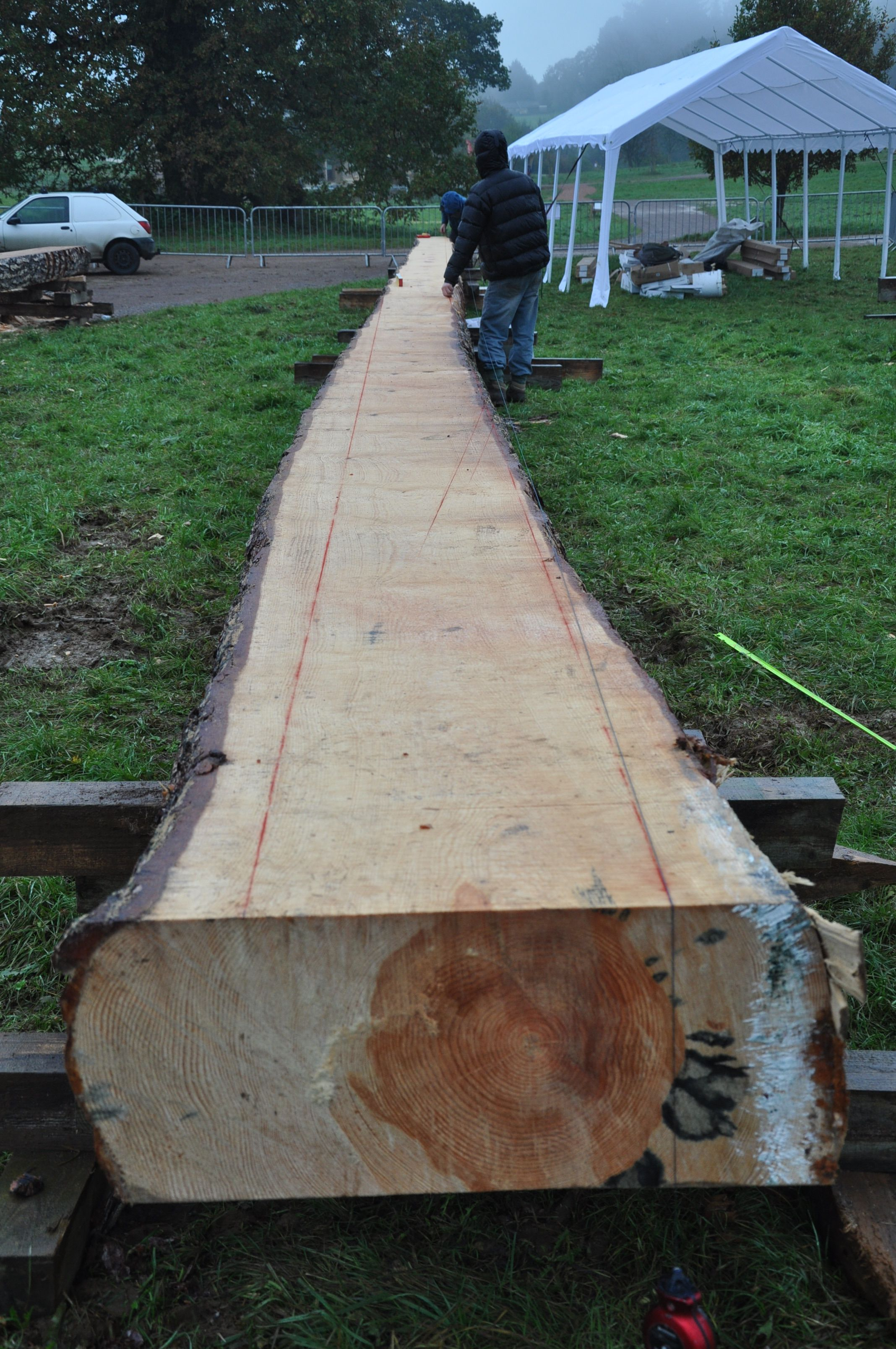What will be a tie beam in the new tree management centre