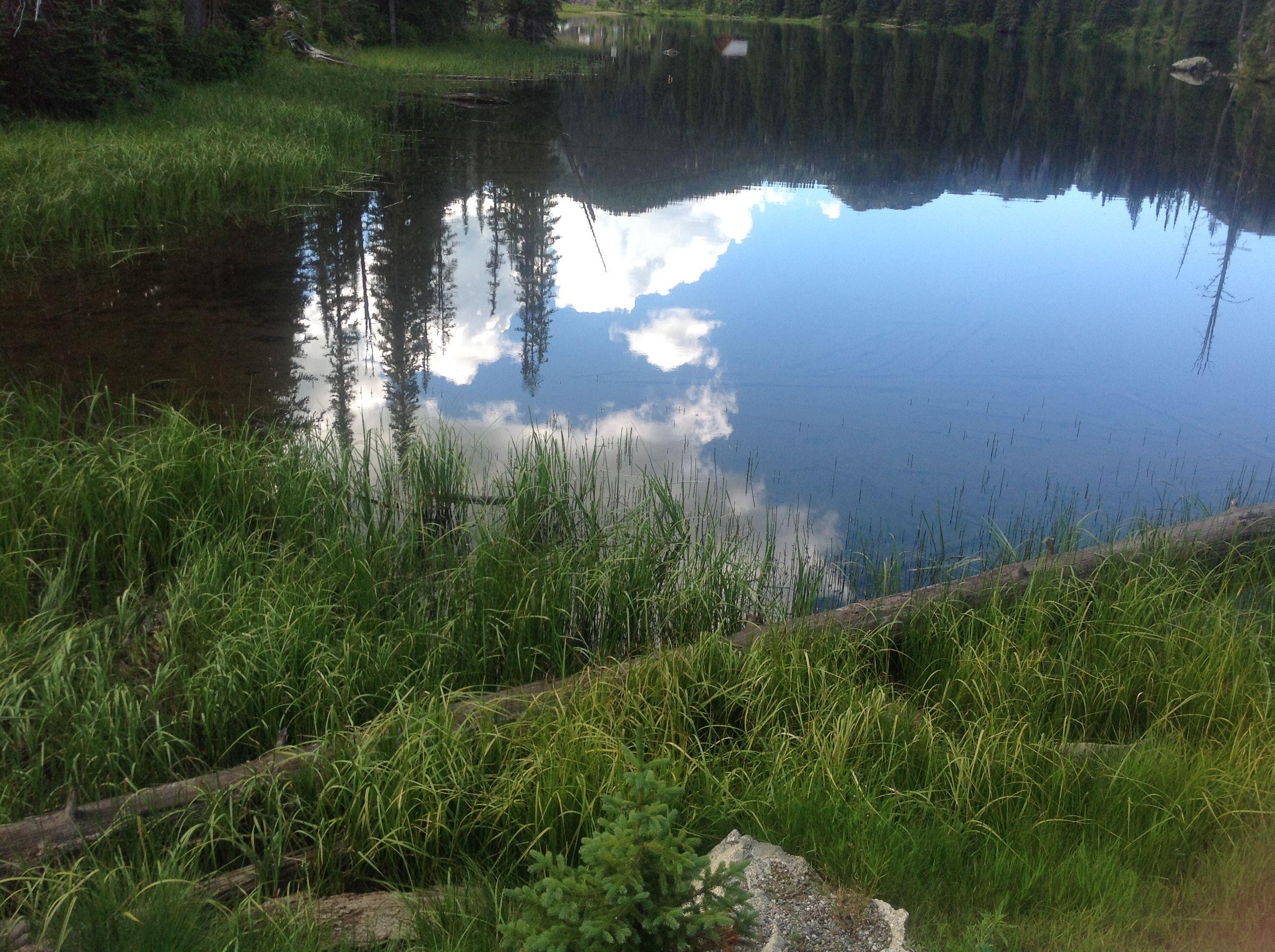 Land of the beautiful.....mountains, lakes and trees  Kootenay Pass BC Canada