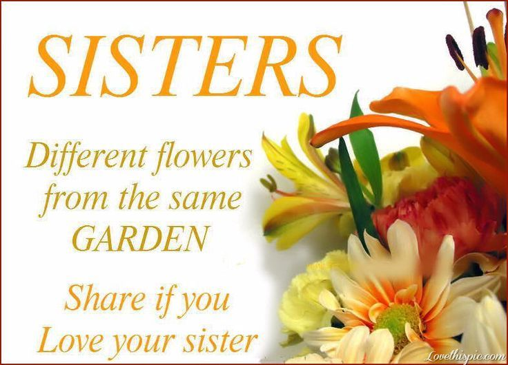 Sisters Love Love Quotes Quotes Quote Flowers Sisters Sister Family