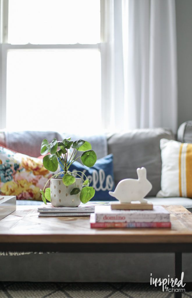 Beau Indoor Plants   Chinese Money Plant   Spring Living Room Refresh | Inspired  By Charm