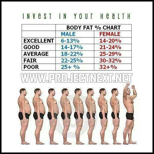 13da5c8d01717aec3acfe49325a0c0d3jpg 510×510 pixels Fitness and - ideal weight chart