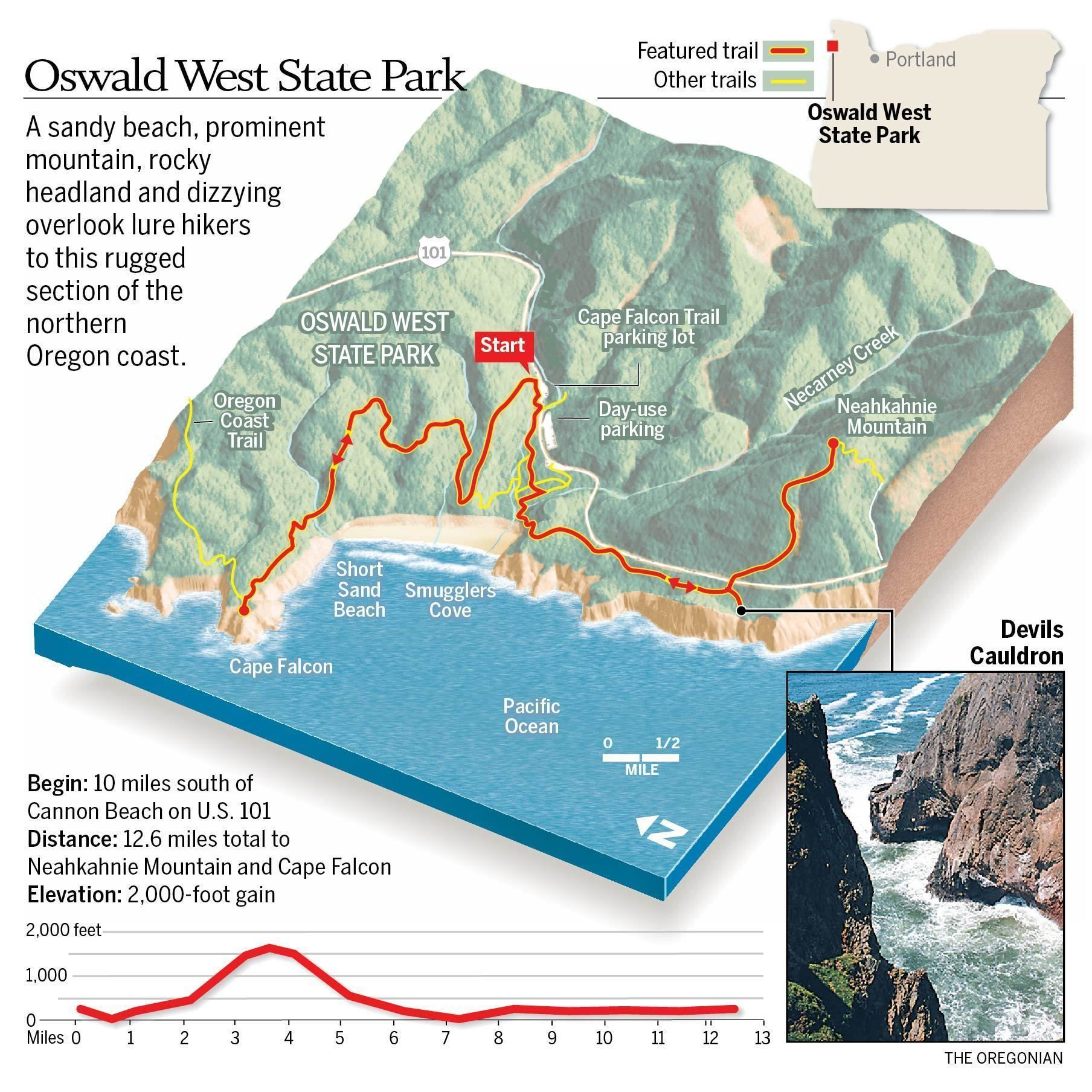 Oswald west state park tempts with neahkahnie mountain pacific oswald west state park tempts with neahkahnie mountain pacific ocean views terrys top 10 trails gumiabroncs Image collections