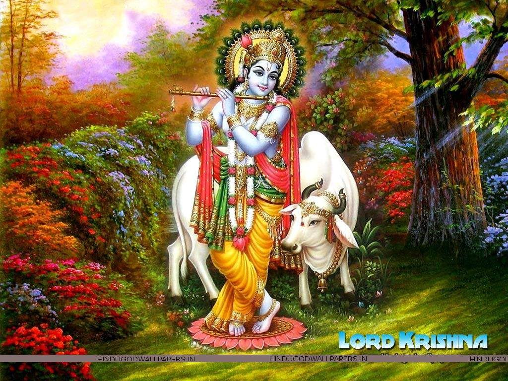 God Image Of Krishna
