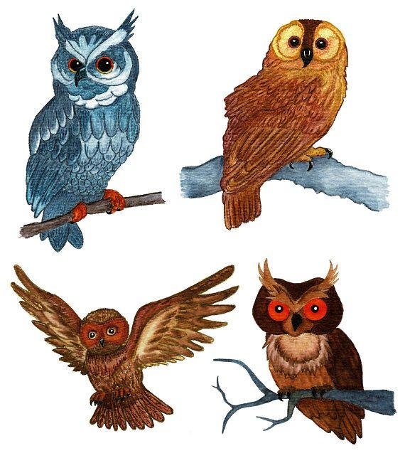 Bathroom Cabinet Clip Art: Watercolor Owls Clip Art, Hand Painted, PNG, Digital DIY