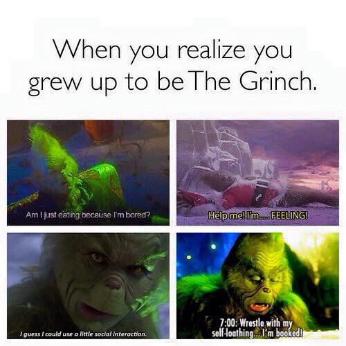 539bc7a6915464abb4fc53b6fb47c660 when you realise your the grinch funnys pinterest grinch