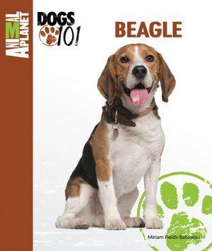 Beagle Max The Boy Beagle Max S Board For Jen Bryn S Wedding