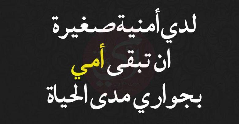 كلام قصير عن الام وعبارات من أجمل ما ك تب في الأم Arabic Calligraphy Calligraphy