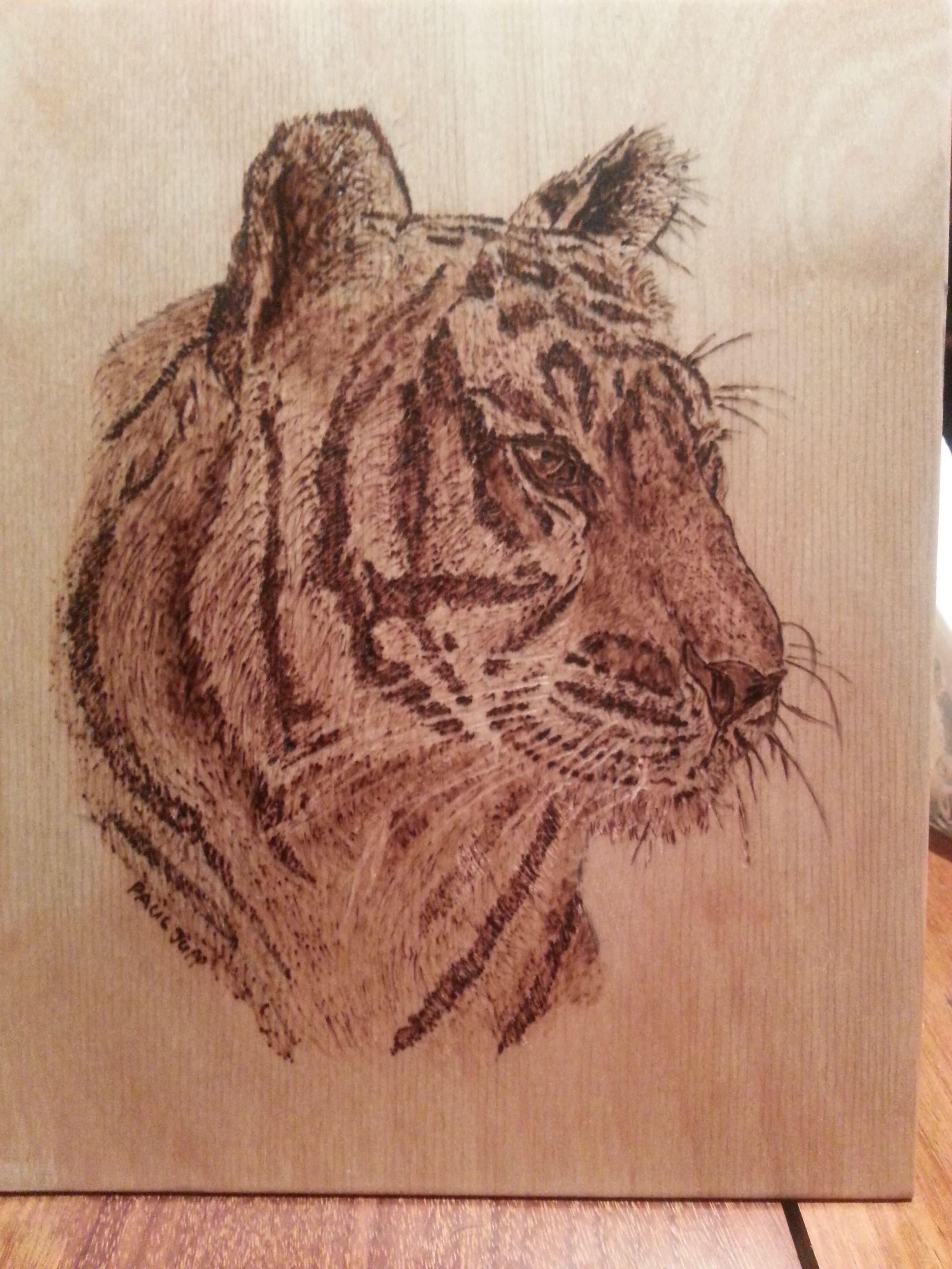Tiger Sue Walters Kit