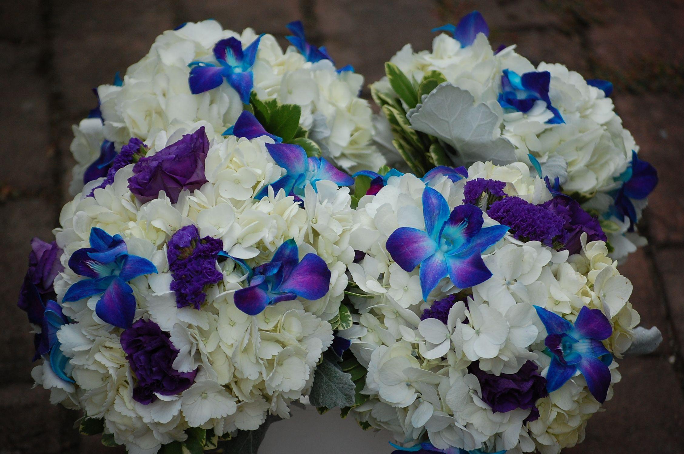 Bridesmaid bouquets of white hydrangea blue dendrobium orchid