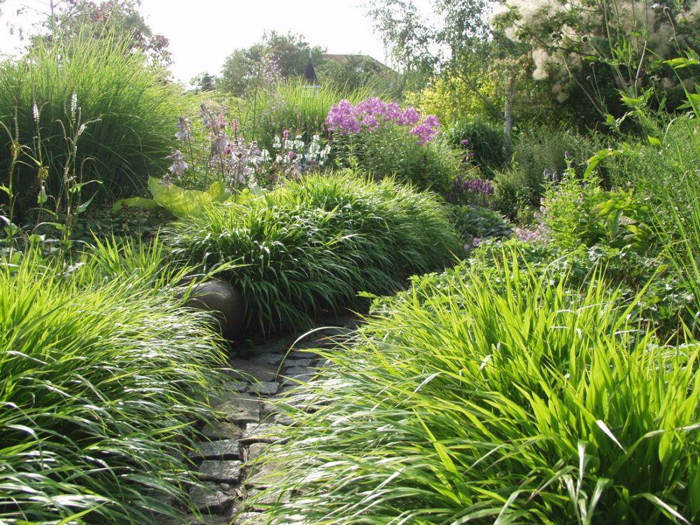 Staudenbeet Im Garten Meine 10 Besten Pflanzen In 2020 Staudenbeet Bepflanzung Garten